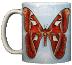 AT180D - Mugs & Totes, Mugs - Atlas Moth