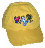 EM401C - Apparel, Embroidered Caps - Dart Frog Fun