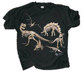 WC109K - T-Shirts, Youth - Bones