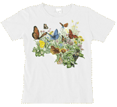 WC124N - T-Shirts, Ladies Scoop-Neck - Butterfly Garden