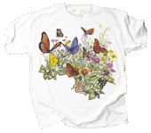 WC124T - T-Shirts, Adult - Butterfly Garden