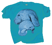 WC245K - T-Shirts, Youth - Manatee Hug