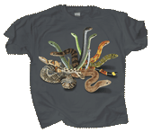 WC346T - T-Shirts, Adult - Snakezz
