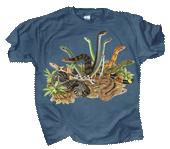 WC346K - T-Shirts, Youth - Snakezz