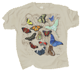 WC367T - T-Shirts, Adult - Butterflies of the World