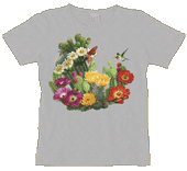 WC373N - T-Shirts, Ladies Scoop-Neck - Cactus Flowers