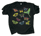 WC534K - T-Shirts, Youth - Butterfly Glow