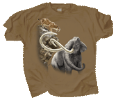 WC540T - T-Shirts, Adult - Pleistocene