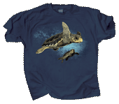 WC562T  - T-Shirts, Adult - Loggerhead Turtles