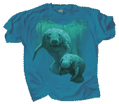 WC599K - T-Shirts, Youth - Manatee Duet