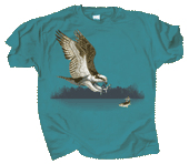 WC600T  - T-Shirts, Adult - Osprey