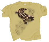 WC609K  - T-Shirts, Youth - Gila Monster Trax
