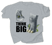 WC620K - T-Shirts, Youth - Think Big