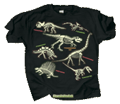 WC623K - T-Shirts, Youth - Electric Dinos