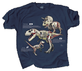 WC639T - T-Shirts, Adult - Dino Anatomy