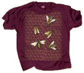 WC641T - T-Shirts, Adult - Bee Hive