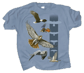WC671T - T-Shirts, Adult - Sky Hunters