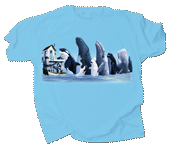 WC679T  - T-Shirts, Adult - Whale Hugger