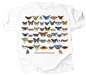 WC681K - T-Shirts, Youth - Ultimate Butterfly Guide