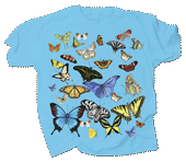 WC689K - T-Shirts, Youth - Butterfly Glow