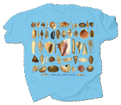 WC691T - T-Shirts, Adult - Ultimate Seashell Guide