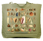 WC691B - Mugs & Totes, Totes - Ultimate Seashell Guide