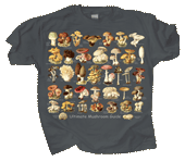 WC695T - T-Shirts, Adult - Ultimate Mushroom Guide
