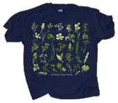 WC700T - T-Shirts, Adult - Ultimate Herb Guide