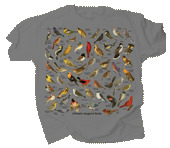 WC706T - T-Shirts, Adult - Ultimate Songbird Guide