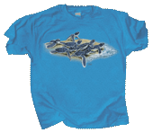 WC739K - T-Shirts, Youth - Loggerhead Dash