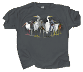 WC777T - T-Shirts, Adult - Pond Scoggins