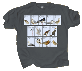 WC779T - T-Shirts, Adult - Shorebird Nerd