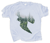 WC791T - T-Shirts, Adult - Peregrine Forest