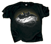WC792T - T-Shirts, Adult - Eye of the Gator