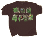 WC795T - T-Shirts, Adult - Trees Sampler