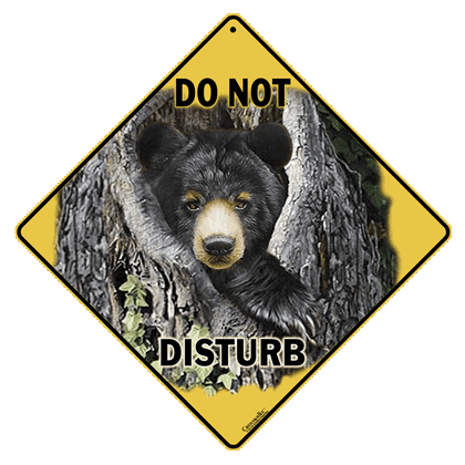Do Not Disturb the Bear