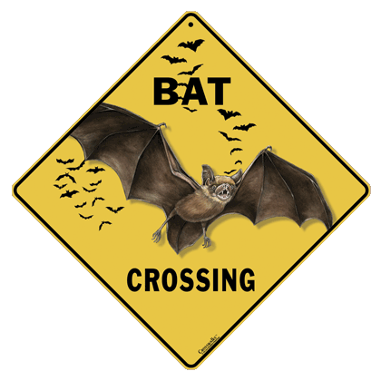 Bat Silhouette Crossing